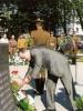 Paminklas žuvusiems Afganistano kare atminti Vilniuje